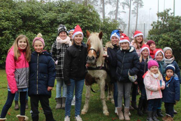 pony gruppe
